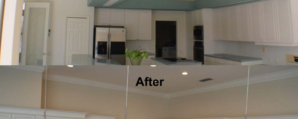 Venice Kitchen Before and After Project Remodeled